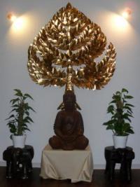 Bodhi-thai-massage-001.JPG_cropped.jpg
